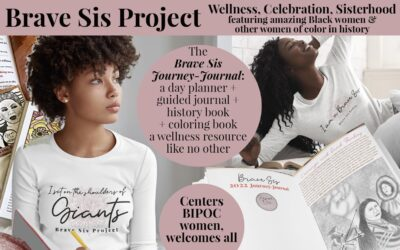 Brave Sis Project